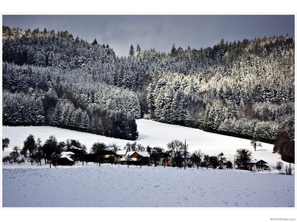 -2017-01-15_Fasanweg_028