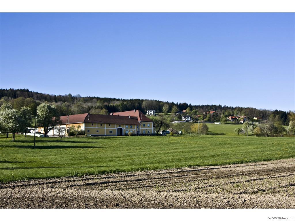 2017-05-02_Höhnwirt_014