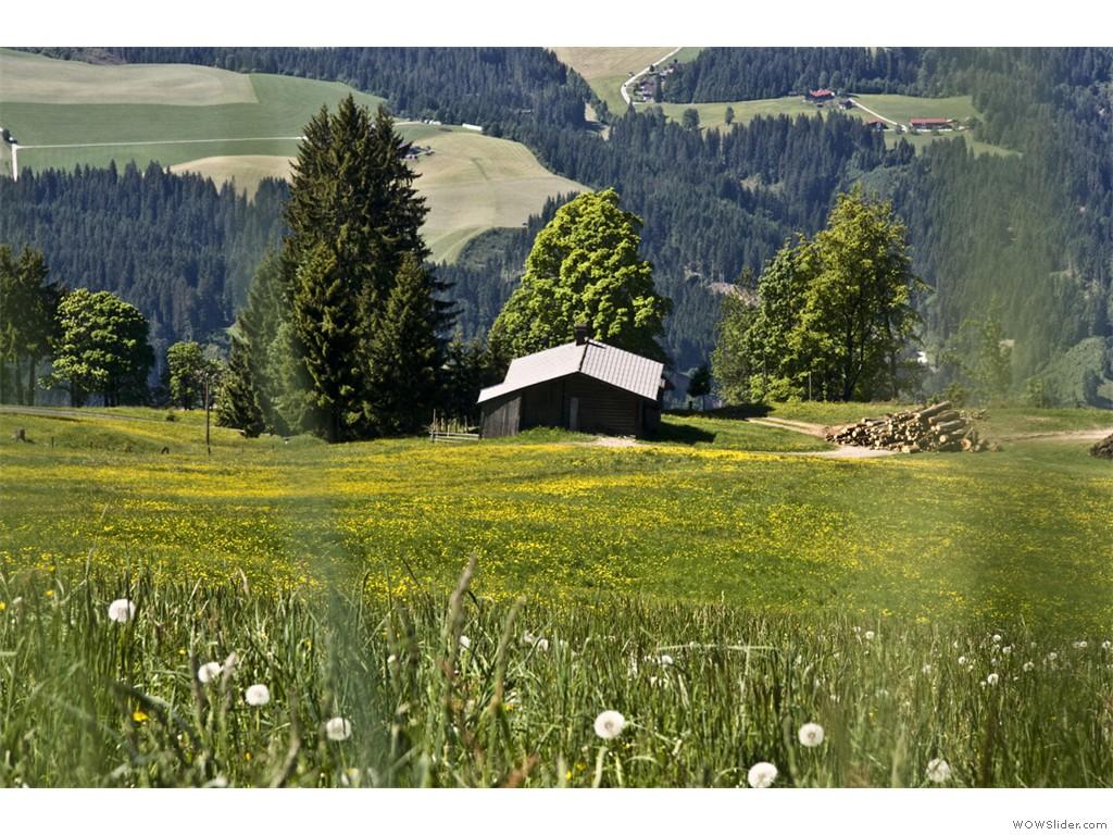 2017-05-28_Hopfgarten_005
